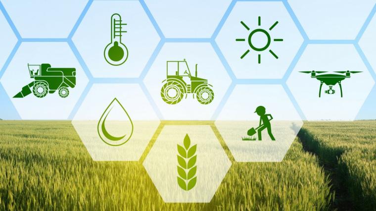 Vai trò của nghề phi nông nghiệp - Ngành phi nông nghiệp là gì ?