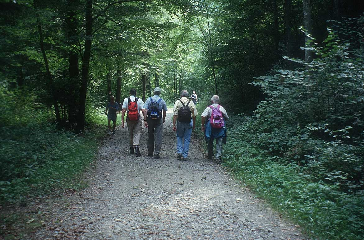 Kỹ năng sinh tồn trong rừng